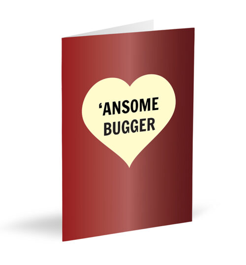 'Ansome Bugger Card